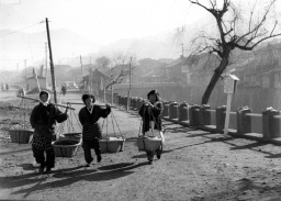被爆70年へ 長崎の記憶 写真が語る戦前~戦後 第4部「レンズ越しの復興」 下