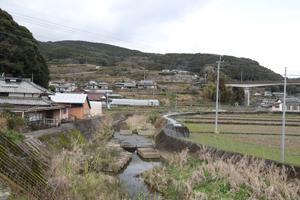 繁子さんの父の古里には今も田園風景が広がっている=諫早市高来町